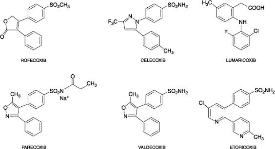 farmaci antiinfiammatori non steroidei  fans   confusioni