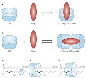 Figura 3. Illustrazione schematica dell'associazione tra ciclodestrina (CD) libera e farmaco per formare i complessi farmaco-CD. A. Complesso farmaco-CD 1:1. B. Complesso farmaco-CD 1:2. C. Modelli proposti di complessi d'inclusione tra prostaglandina E2 e (a) α-CD, (b) β-CD e (c) γ-CD.