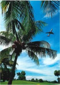 Già dall'aereo che sorvola Miami, i golfisti che arrivano qui da ogni angolo del mondo possono ammirare il green del mitico Doral Resort